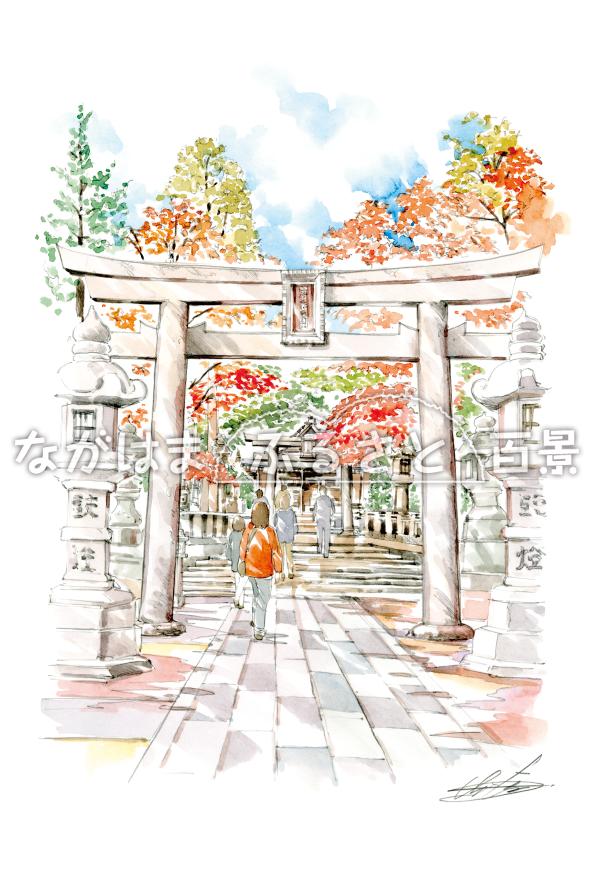 意富布良神社の紅葉