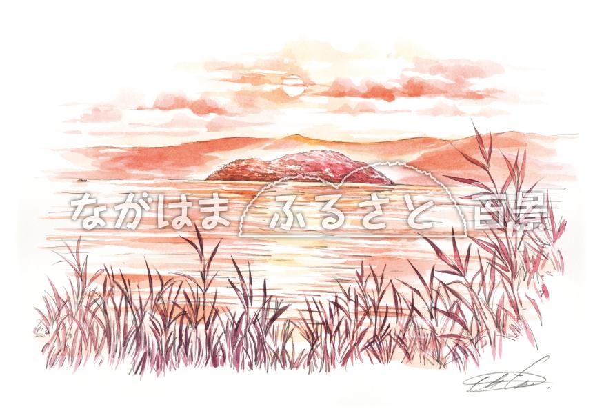 夕景の竹生島